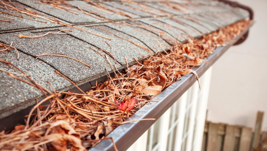 Fall is Coming! It's Time to Call for Professional Gutter Cleaning