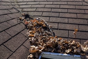 Gutter Clogged With Leaves causing leaks