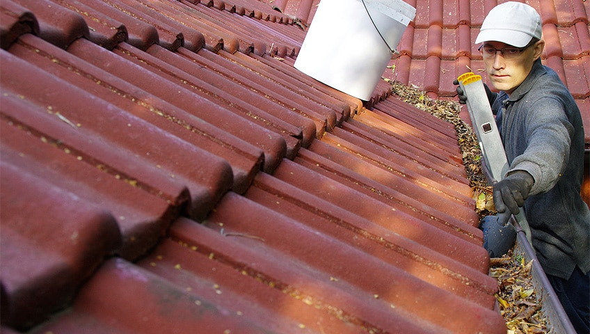 Spring To-Do List for Roof Maintenance & Inspection