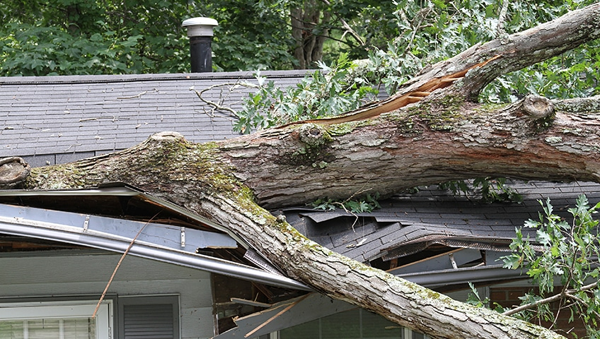What is an Emergency Roof Repair & What to Do When You Need One